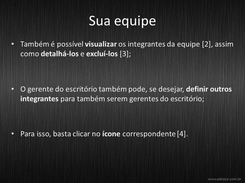 Sua equipe Também é possível visualizar os integrantes da equipe [2], assim como detalhá-los e excluí-los [3];